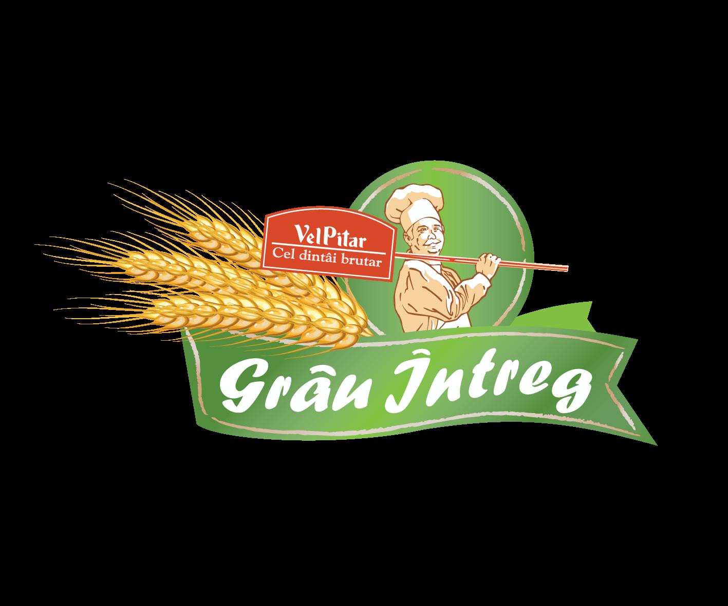 Logo Grau Intreg